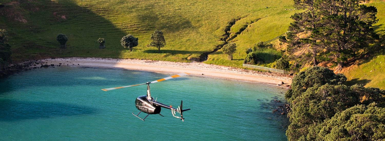 Home NZ | Leaders in Helicopter Sales and Service - Heliflite